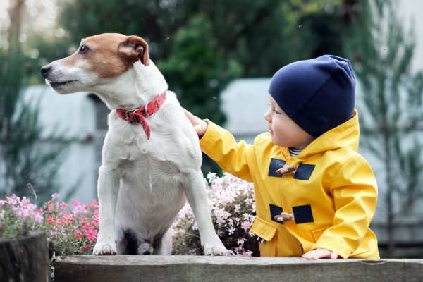 small-kid-with-dog-YC6WDXN.jpg